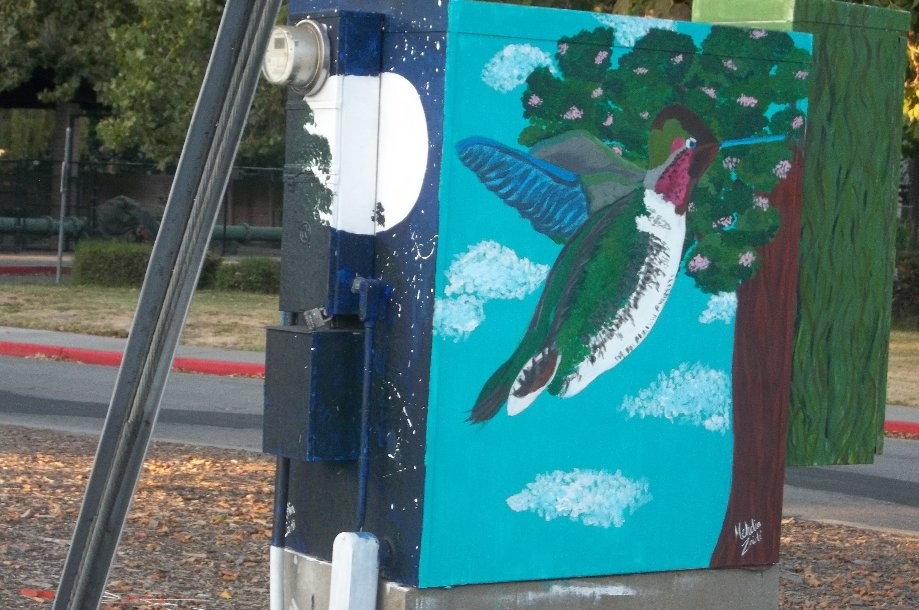 Trip photo #9/11 recently painted utility boxes