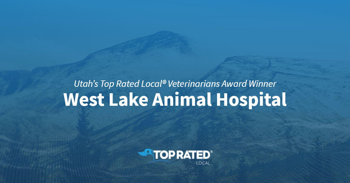 Utah's Top Rated Local® Veterinarians Award Winner: West Lake Animal Hospital