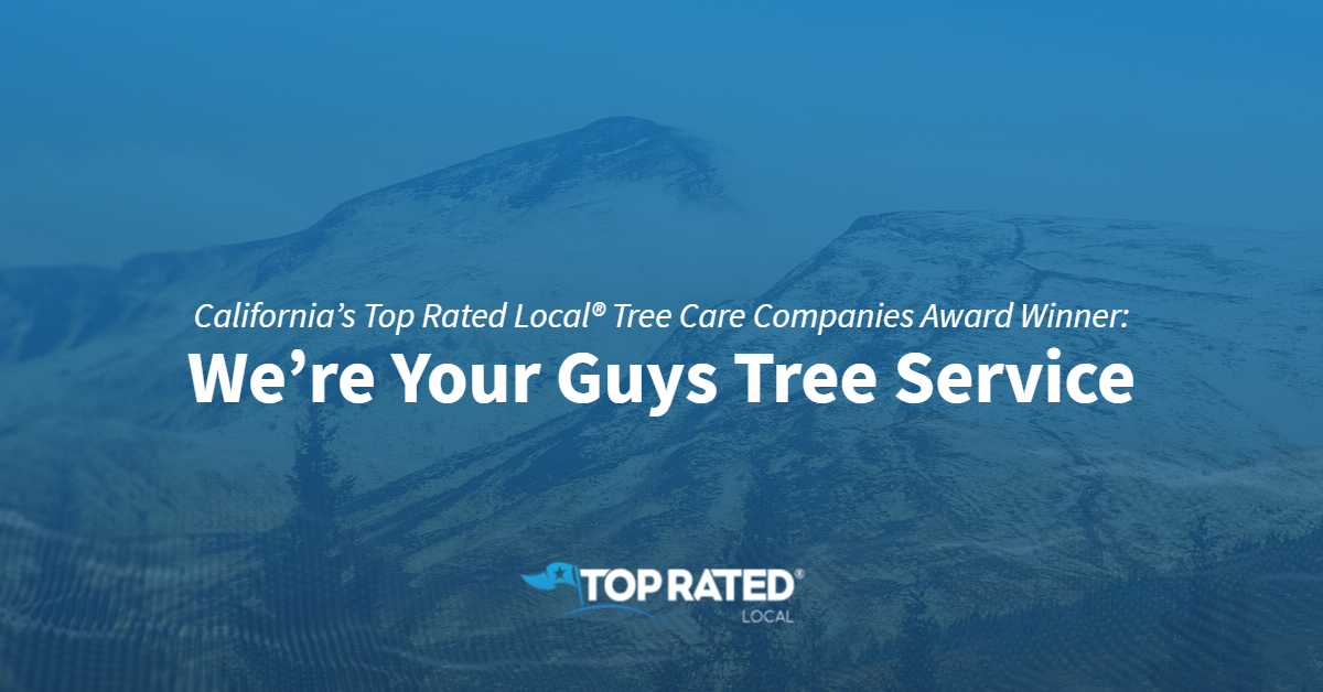 California's Top Rated Local® Tree Care Companies Award Winner: We're Your Guys Tree Service