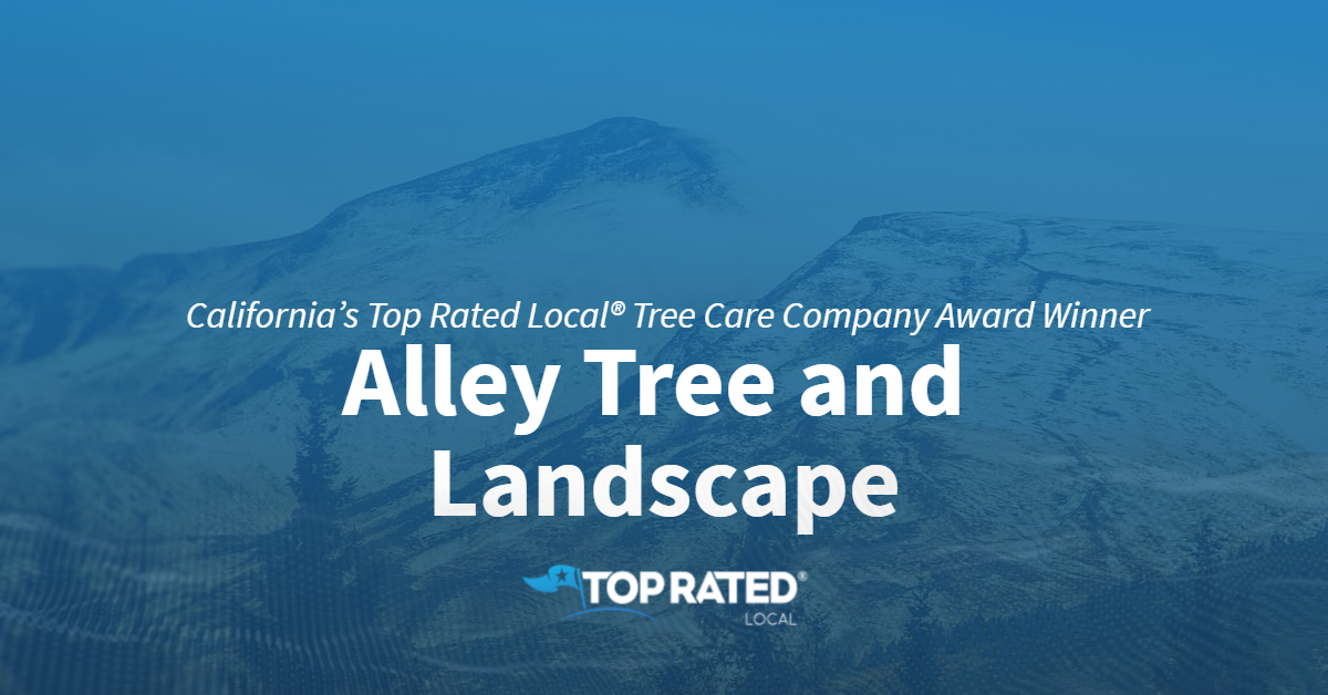 California's Top Rated Local® Tree Care Company Award Winner: Alley Tree and Landscape