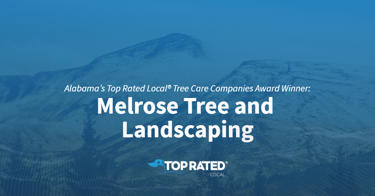 Alabama's Top Rated Local® Tree Care Companies Award Winner: Melrose Tree and Landscaping