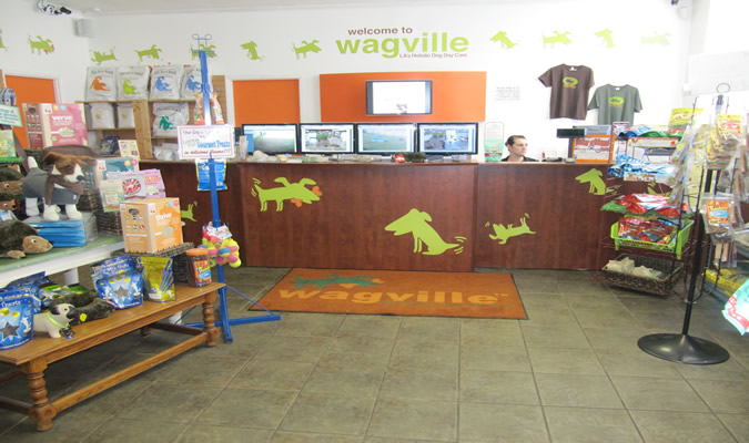 California's Top Rated Local® Pet Groomers Award Winner: WagVille
