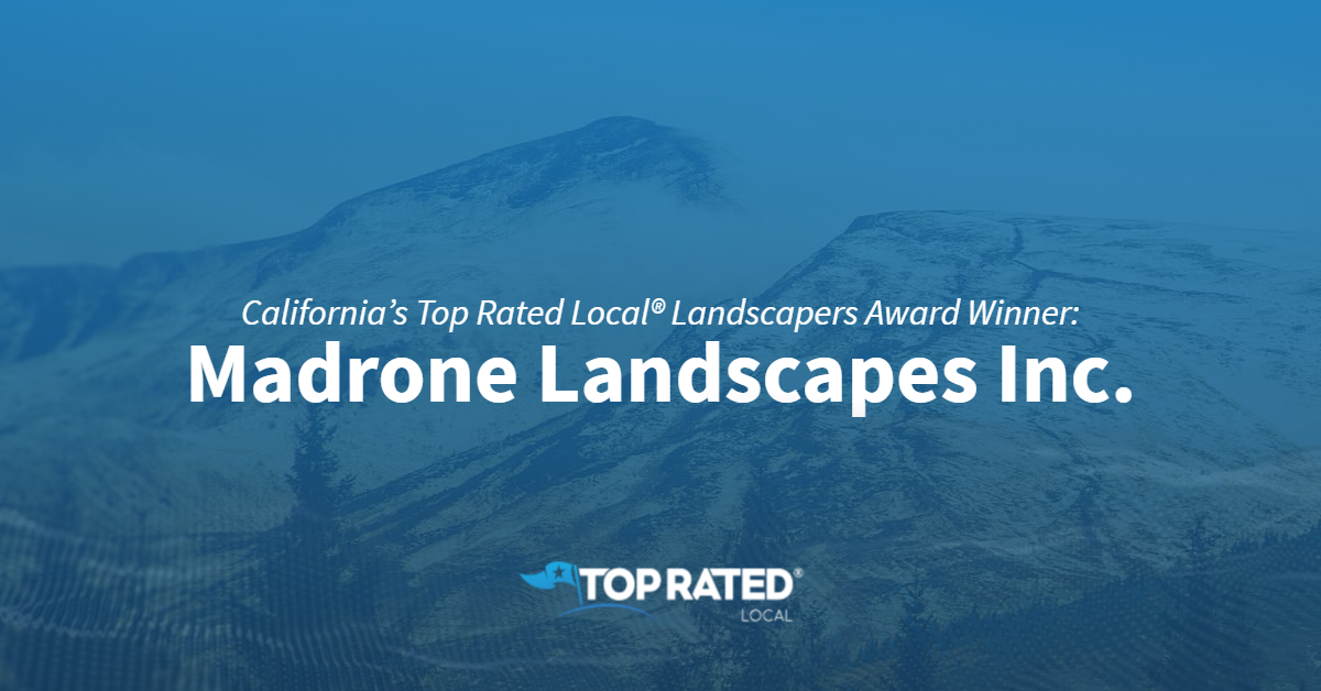 California's Top Rated Local® Landscapers Award Winner: Madrone Landscapes Inc.