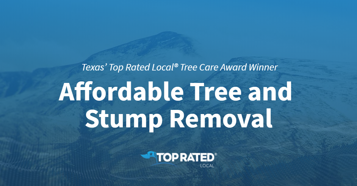 Texas' Top Rated Local® Tree Care Award Winner: Affordable Tree and Stump Removal