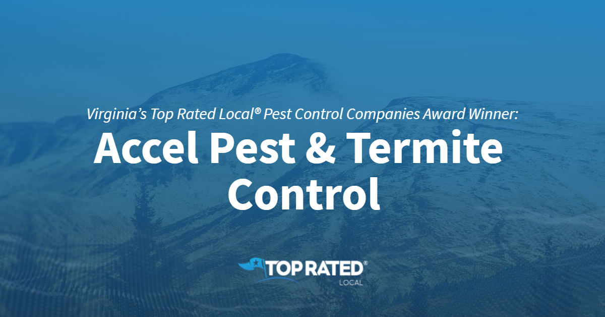 Virginia's Top Rated Local® Pest Control Companies Award Winner: Accel Pest & Termite Control