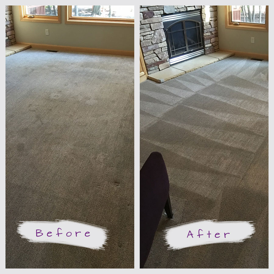 Minnesota's Top Rated Local® Carpet Cleaners Award Winner: Twin Cities Finest
