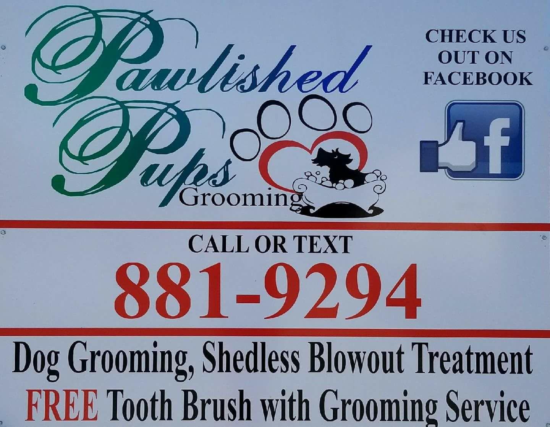 South Dakota's Top Rated Local® Pet Groomers Award Winner: Pawlished Pups