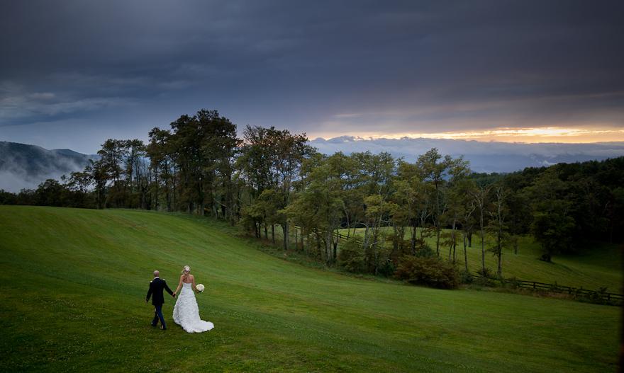 North Carolina's Top Rated Local® Photographers Award Winner: Colman Photography