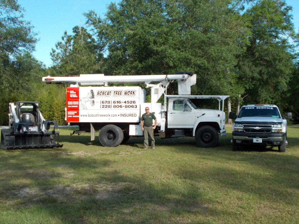 Mississippi's Top Rated Local® Tree Care Companies Award Winner: Bobcat Tree Work
