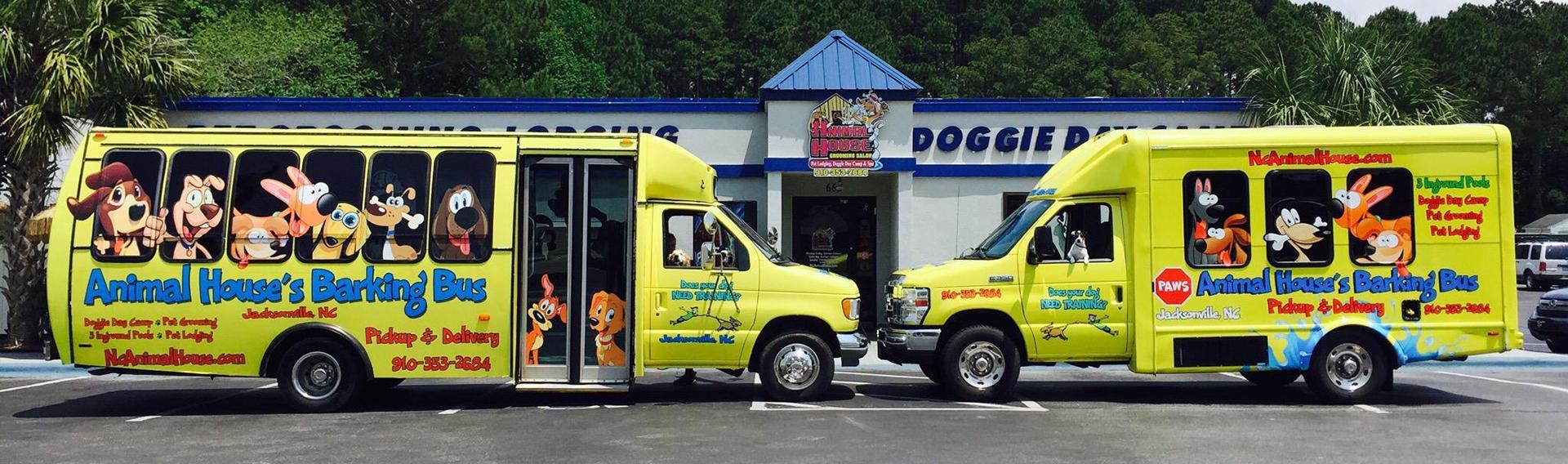 North Carolina's Top Rated Local® Pet Groomers Award Winner: Animal House Grooming