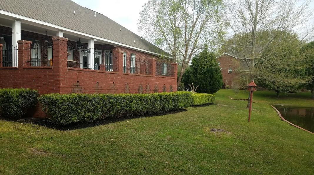 Mississippi's Top Rated Local® Lawn Care Companies Award Winner: TLC LAWNCARE AND LANDSCAPING