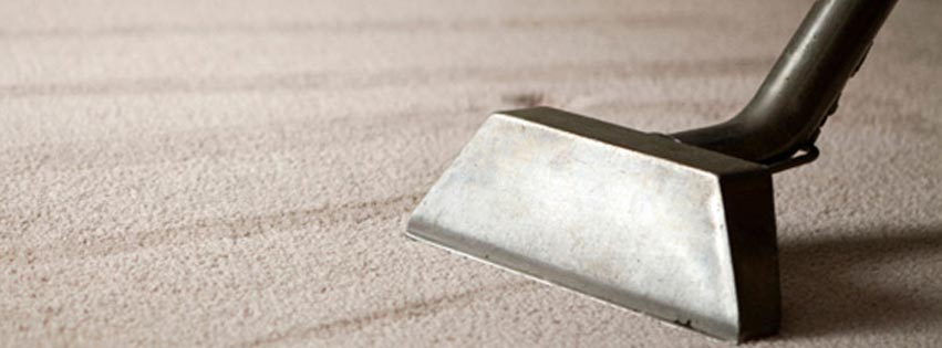 North Dakota's Top Rated Local® Carpet Cleaners Award Winner: Carpet Patrol
