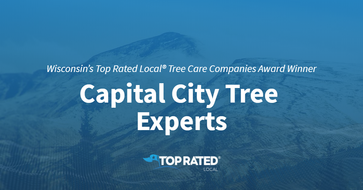 Wisconsin's Top Rated Local® Tree Care Companies Award Winner: Capital City Tree Experts