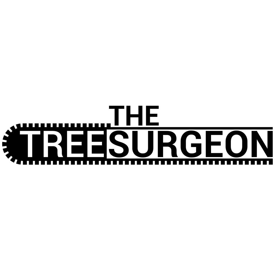 Nebraska's Top Rated Local® Tree Care Companies Award Winner: The Tree Surgeon