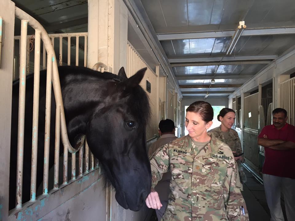 Arkansas' Top Rated Local® Veterinarians Award Winner: St Francis Animal Hospital