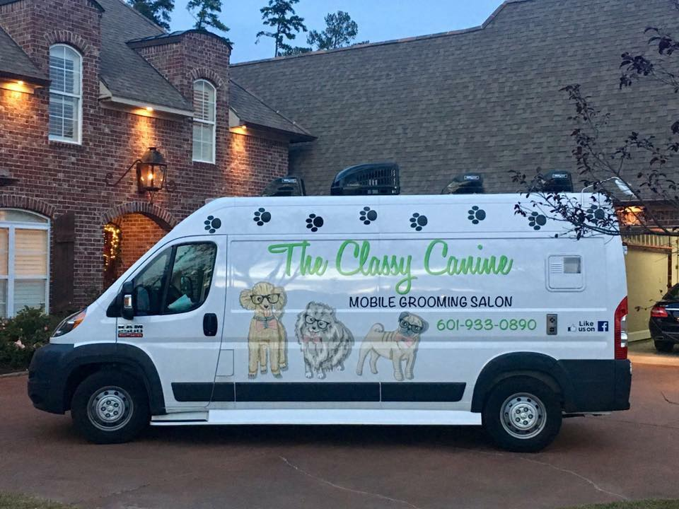 Mississippi's Top Rated Local® Pet Groomers Award Winner: The Classy Canine