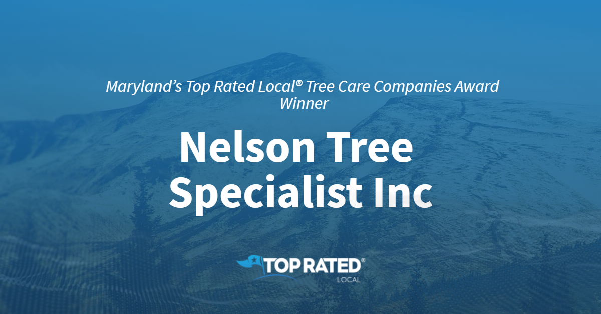 Maryland's Top Rated Local® Tree Care Companies Award Winner: Nelson Tree Specialist Inc