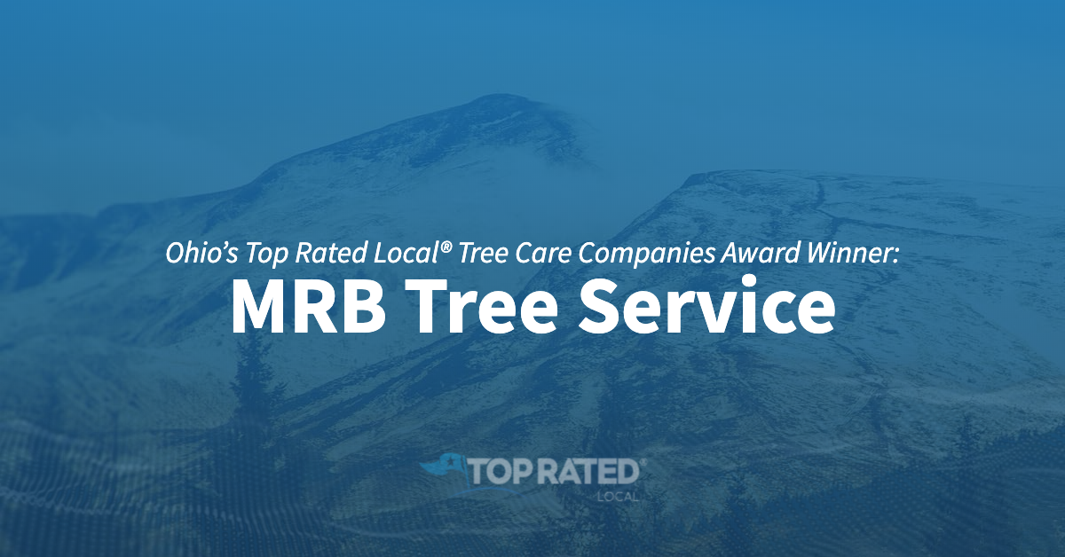 Ohio's Top Rated Local® Tree Care Companies Award Winner: MRB Tree Service