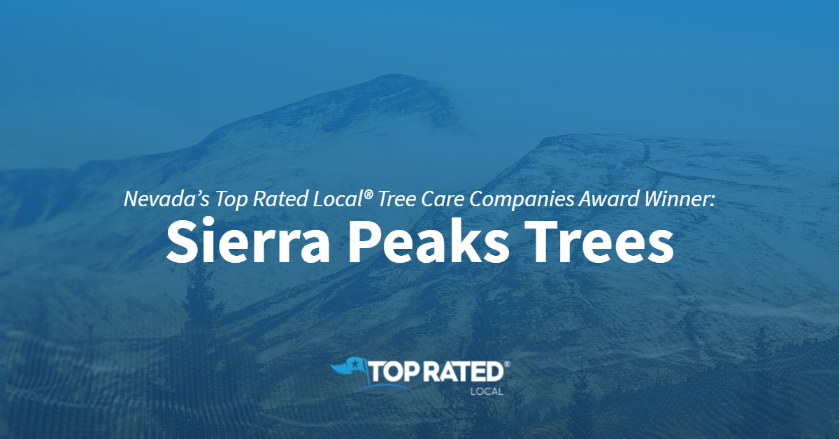 Nevada's Top Rated Local® Tree Care Companies Award Winner: Sierra Peaks Trees