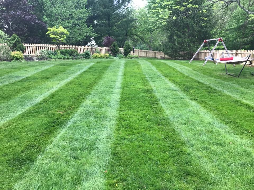 Indiana's Top Rated Local® Lawn Care Companies Award Winner: Anthony's Lawn Care & Landscaping