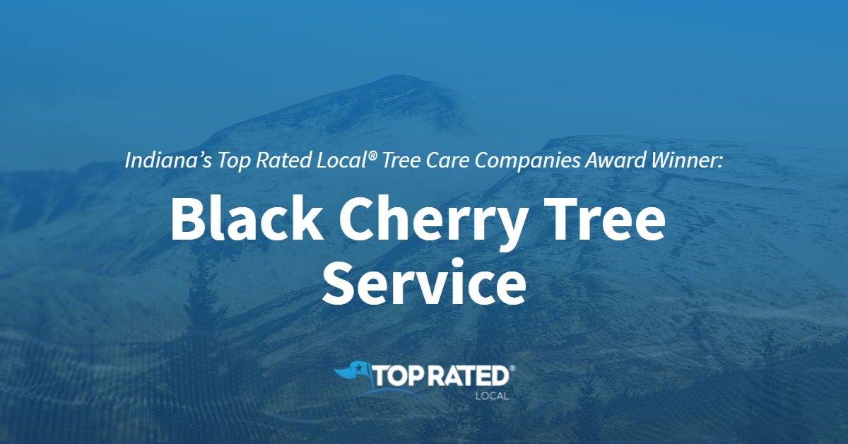 Indiana's Top Rated Local® Tree Care Companies Award Winner: Black Cherry Tree Service