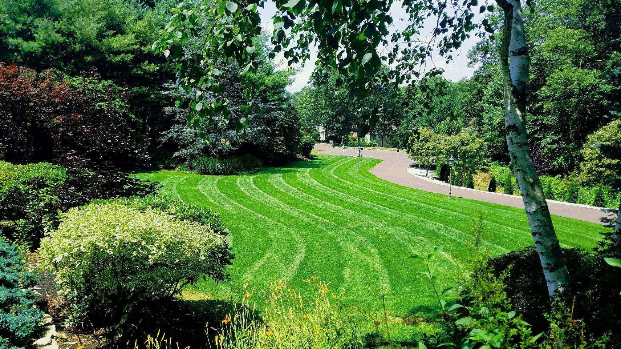 Connecticut's Top Rated Local® Lawn Care Companies Award Winner: Highwood Landscaping, LLC