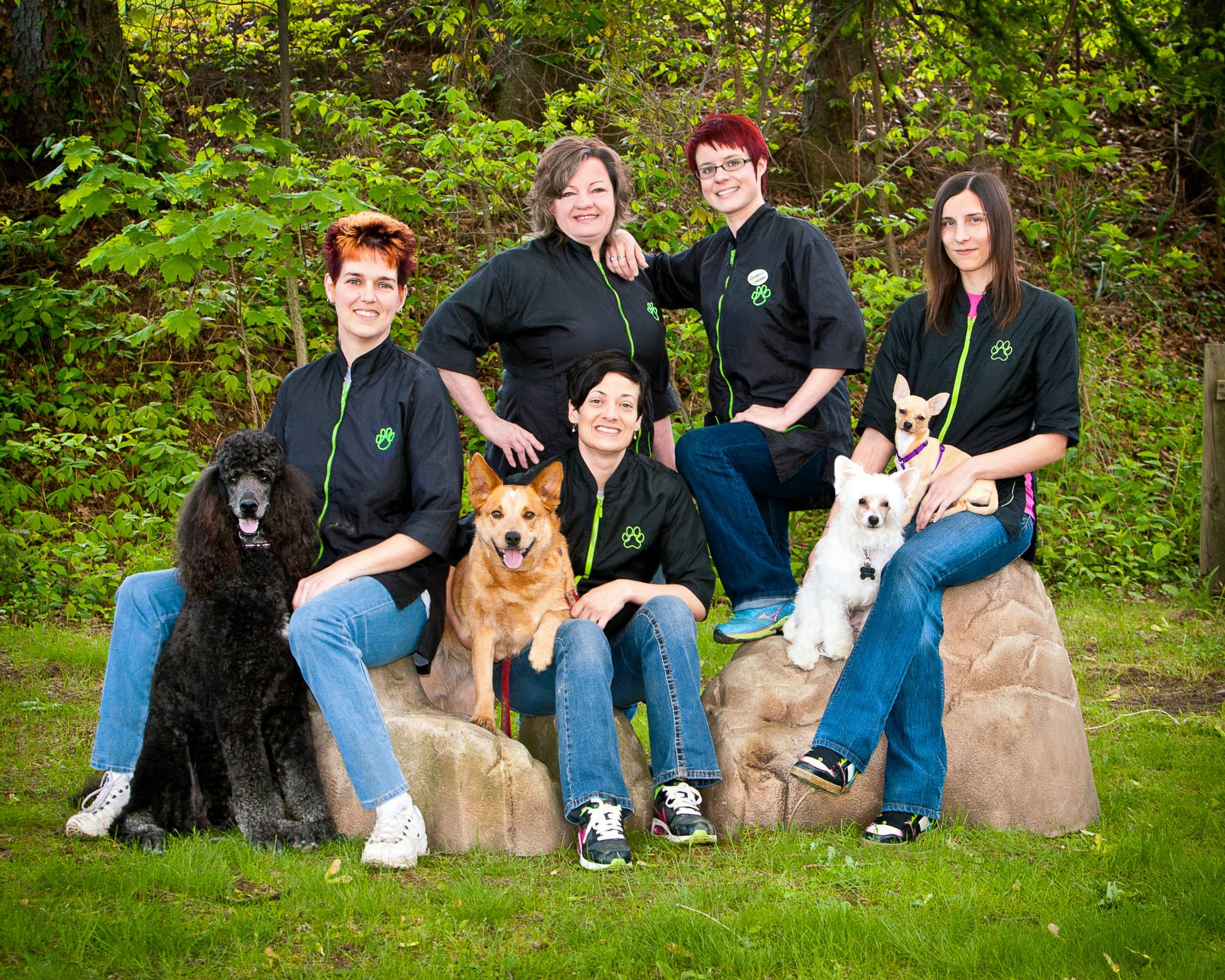 Pennsylvania's Top Rated Local® Pet Groomers Award Winner: PawFect Grooming