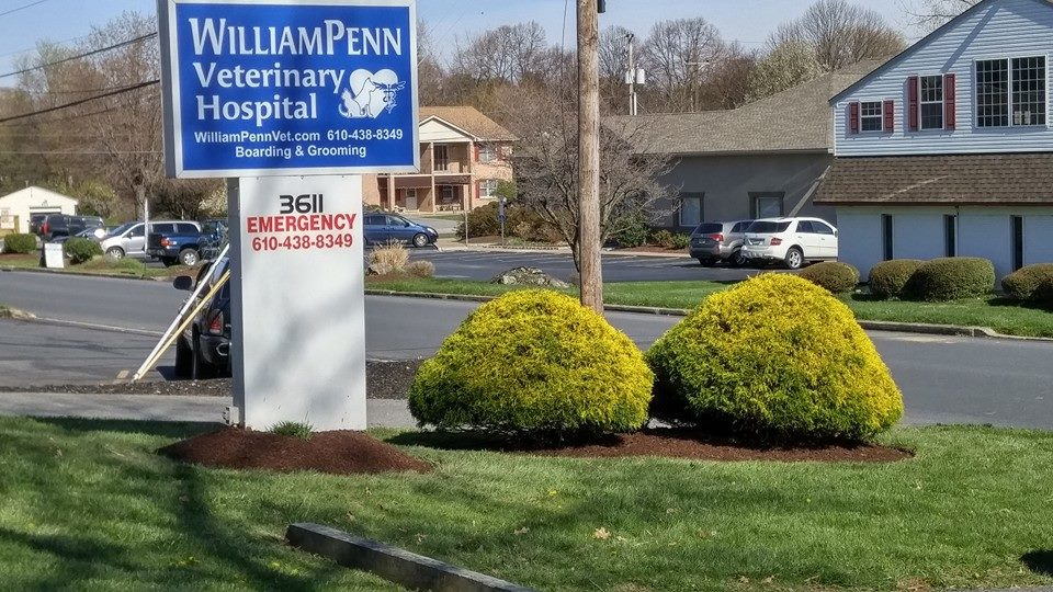 Pennsylvania's Top Rated Local® Veterinarians Award Winner: William Penn Veterinary Hospital