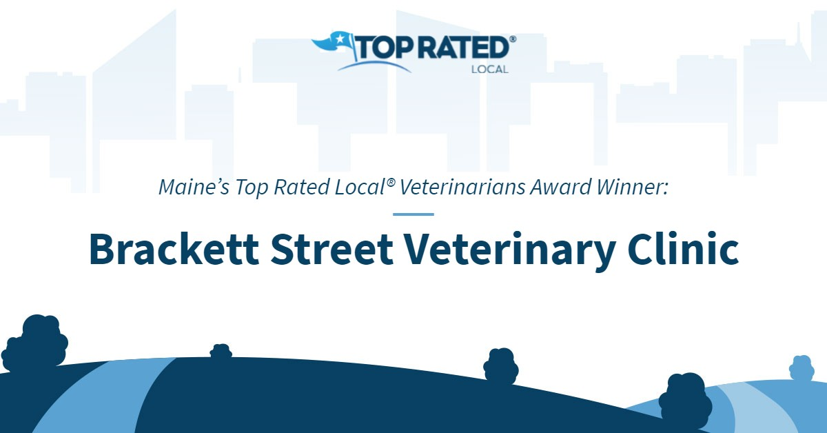 Maine's Top Rated Local® Veterinarians Award Winner: Brackett Street Veterinary Clinic