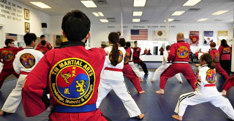 Illinois' Top Rated Local® Martial Arts Award Winner: TM Martial Arts