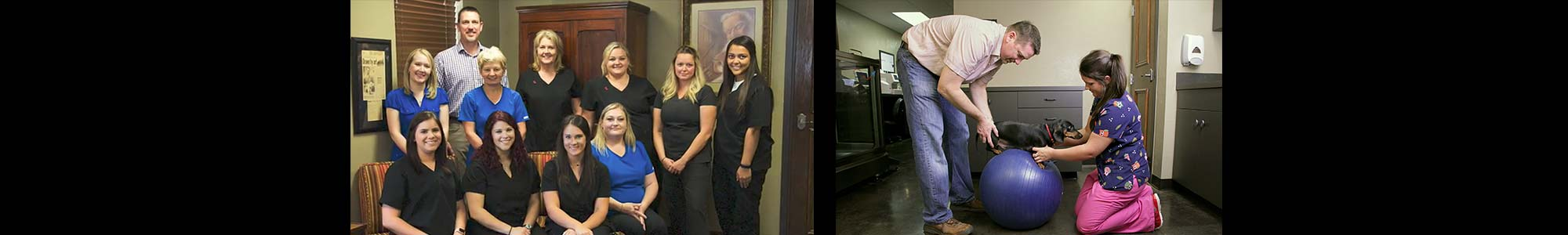 Oklahoma's Top Rated Local® Veterinarians Award Winner: McGee Street Animal Hospital