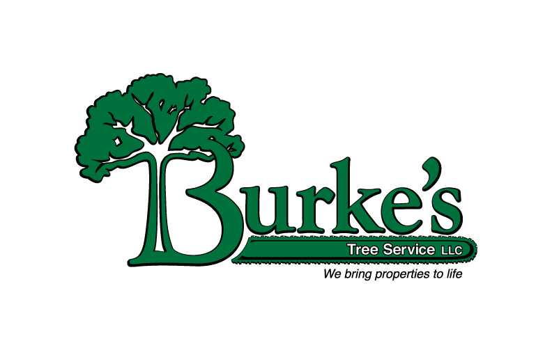 New Hampshire's Top Rated Local® Tree Care Companies Award Winner: Burke's Tree Services