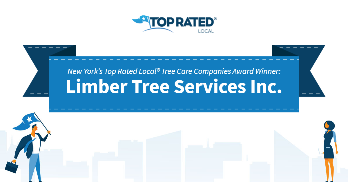 New York's Top Rated Local® Tree Care Companies Award Winner: Limber Tree Services Inc.