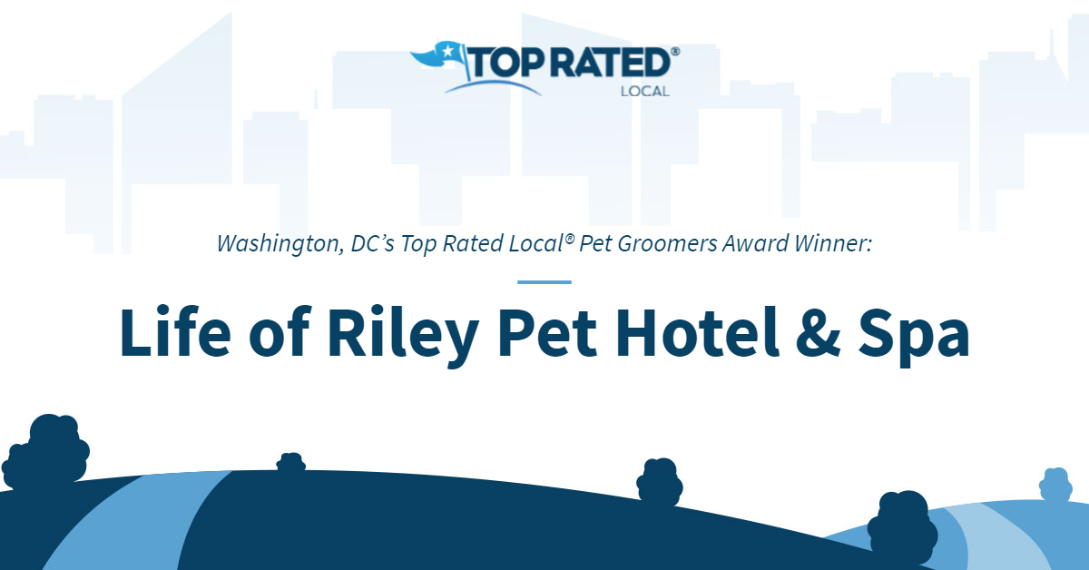 Washington, DC's Top Rated Local® Pet Groomers Award Winner: Life of Riley Pet Hotel & Spa