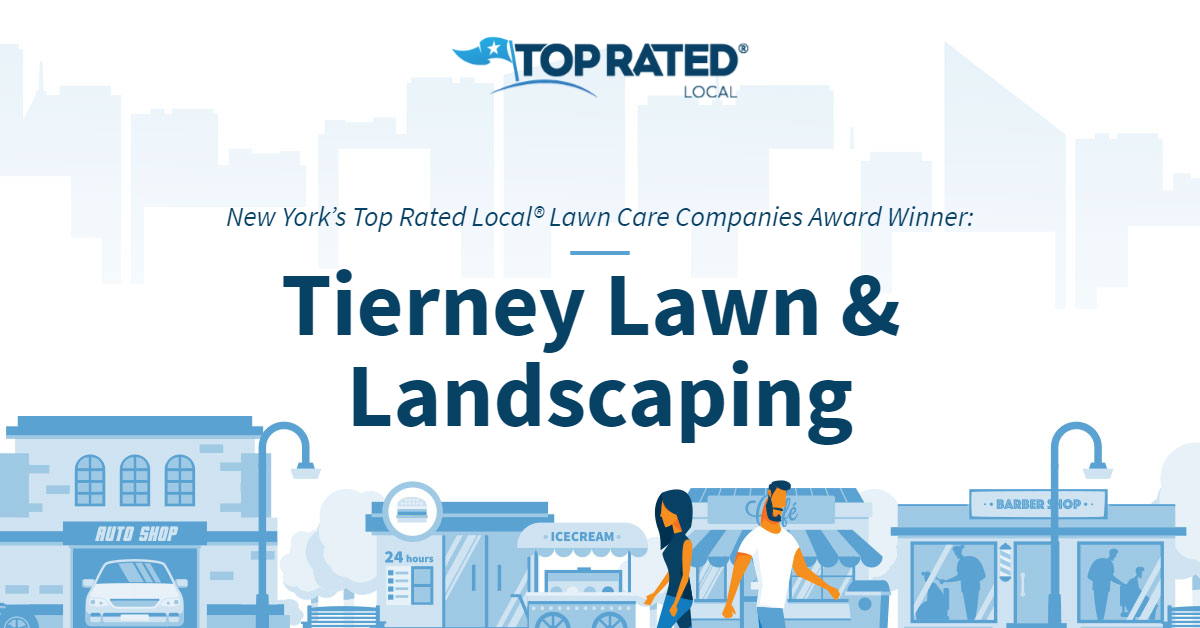New York's Top Rated Local® Lawn Care Companies Award Winner: Tierney Lawn & Landscaping