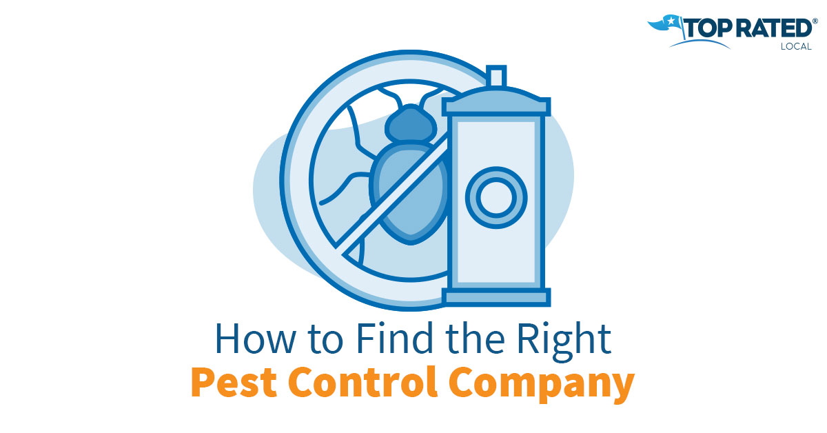 How to Find the Right Pest Control Company