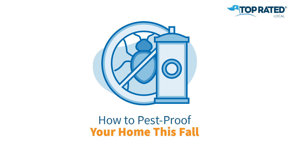 How to Pest-Proof Your Home This Fall