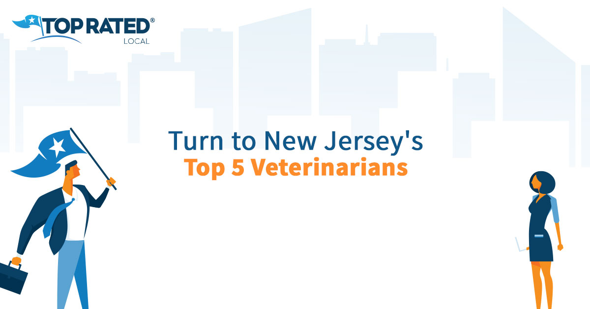 Turn to New Jersey's Top 5 Veterinarians