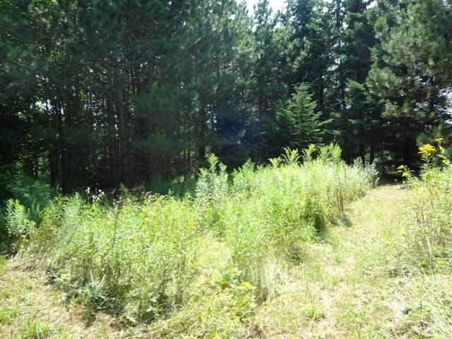 Vacant Land at 7725 16th Sdrd, King, Ontario. Image 2