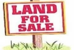 Vacant Land at Ptlt 35 Con 3 Ravenshoe Rd, East Gwillimbury, Ontario. Image 1