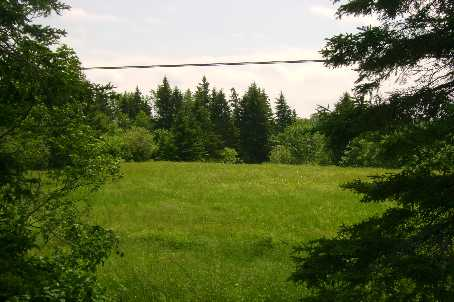 Vacant Land at 1570B East Rd, Part 1 Rd, Muskoka Lakes, Ontario. Image 1