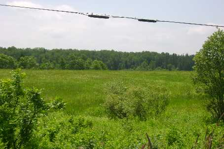 Vacant Land at 1570B East Rd, Part 1 Rd, Muskoka Lakes, Ontario. Image 2