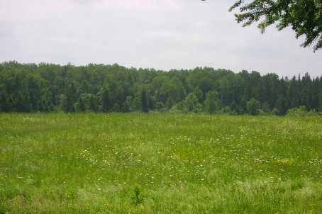 Vacant Land at 1570B East Rd, Part 1 Rd, Muskoka Lakes, Ontario. Image 3