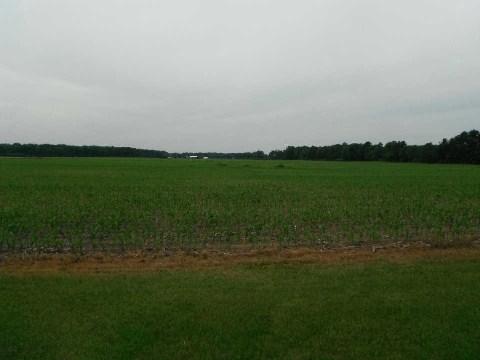 Farm at 1 Concession Rd 6 Rd, Norfolk, Ontario. Image 1