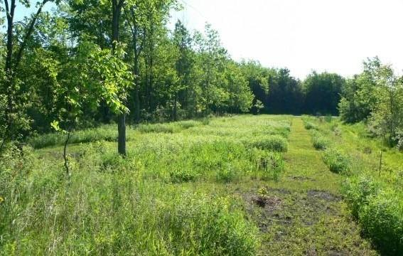 Vacant Land at 510 Deerview Dr, Kingston, Ontario. Image 2