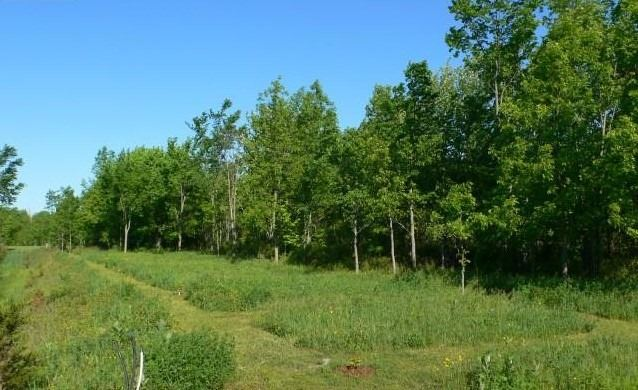 Vacant Land at 510 Deerview Dr, Kingston, Ontario. Image 3
