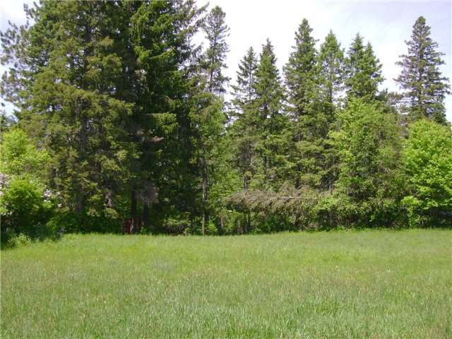 Vacant Land at 000 Highway 522, Muskoka Lakes, Ontario. Image 2