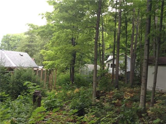 Other at 66 Dewey's Island, Kawartha Lakes, Ontario. Image 5