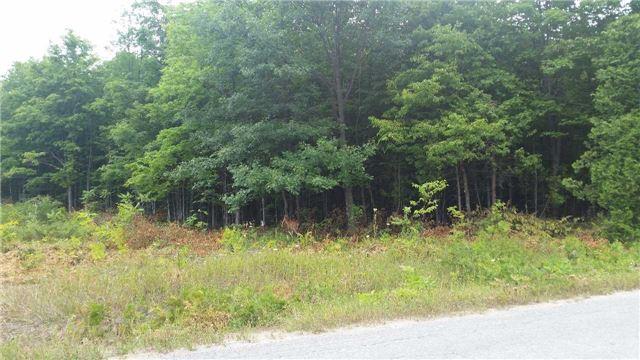 Vacant Land at 3207 Hampshire Mills Line, Severn, Ontario. Image 1