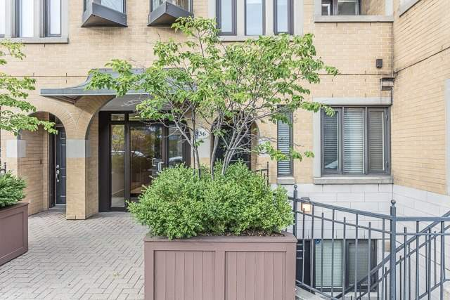 Condo Apartment at 336 Davenport Rd, Unit 101, Toronto, Ontario. Image 1